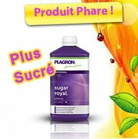 plagron-sugar-ro