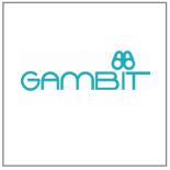 Voir les produits de la marque GAMBIT