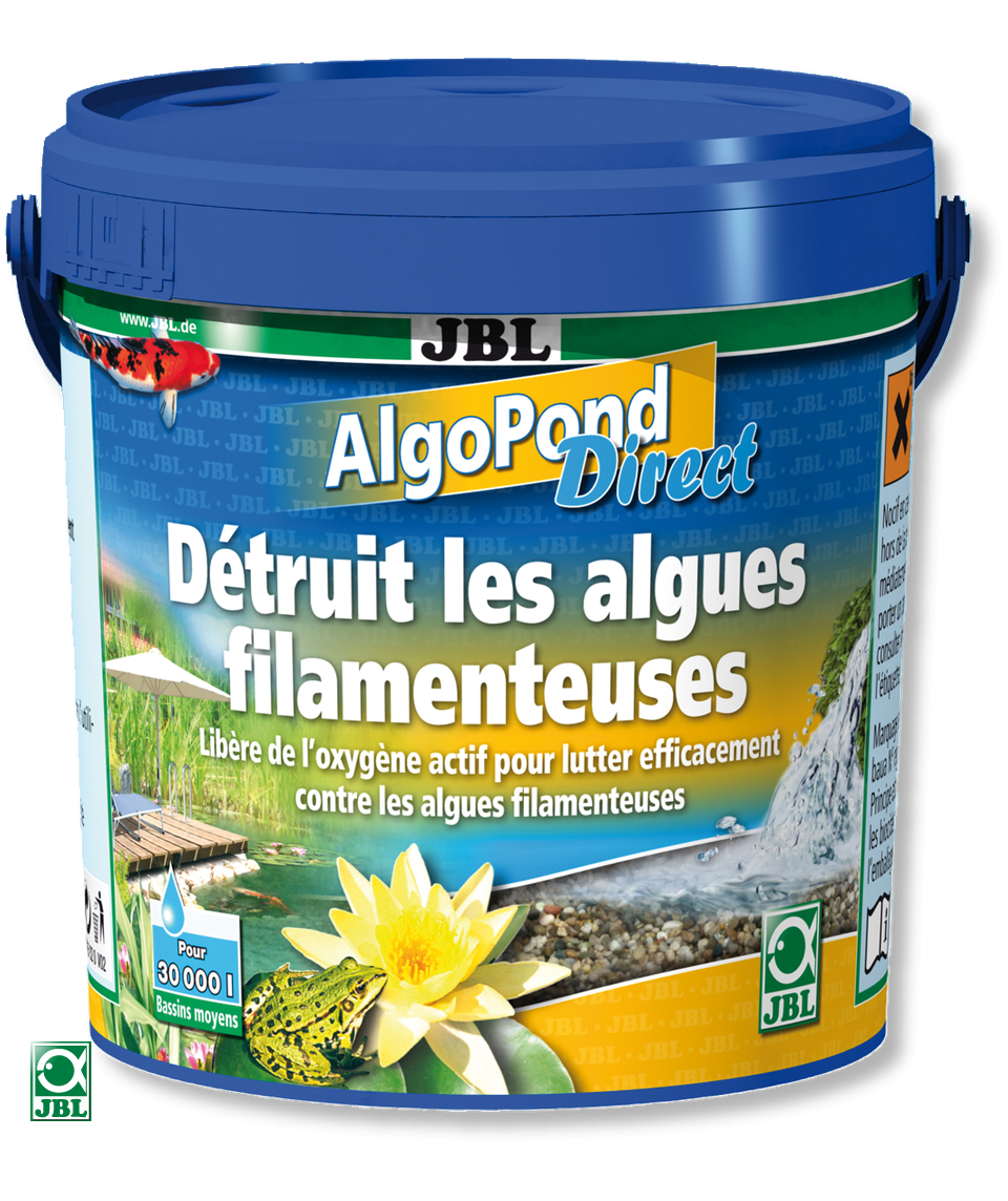 algopond_direct_1