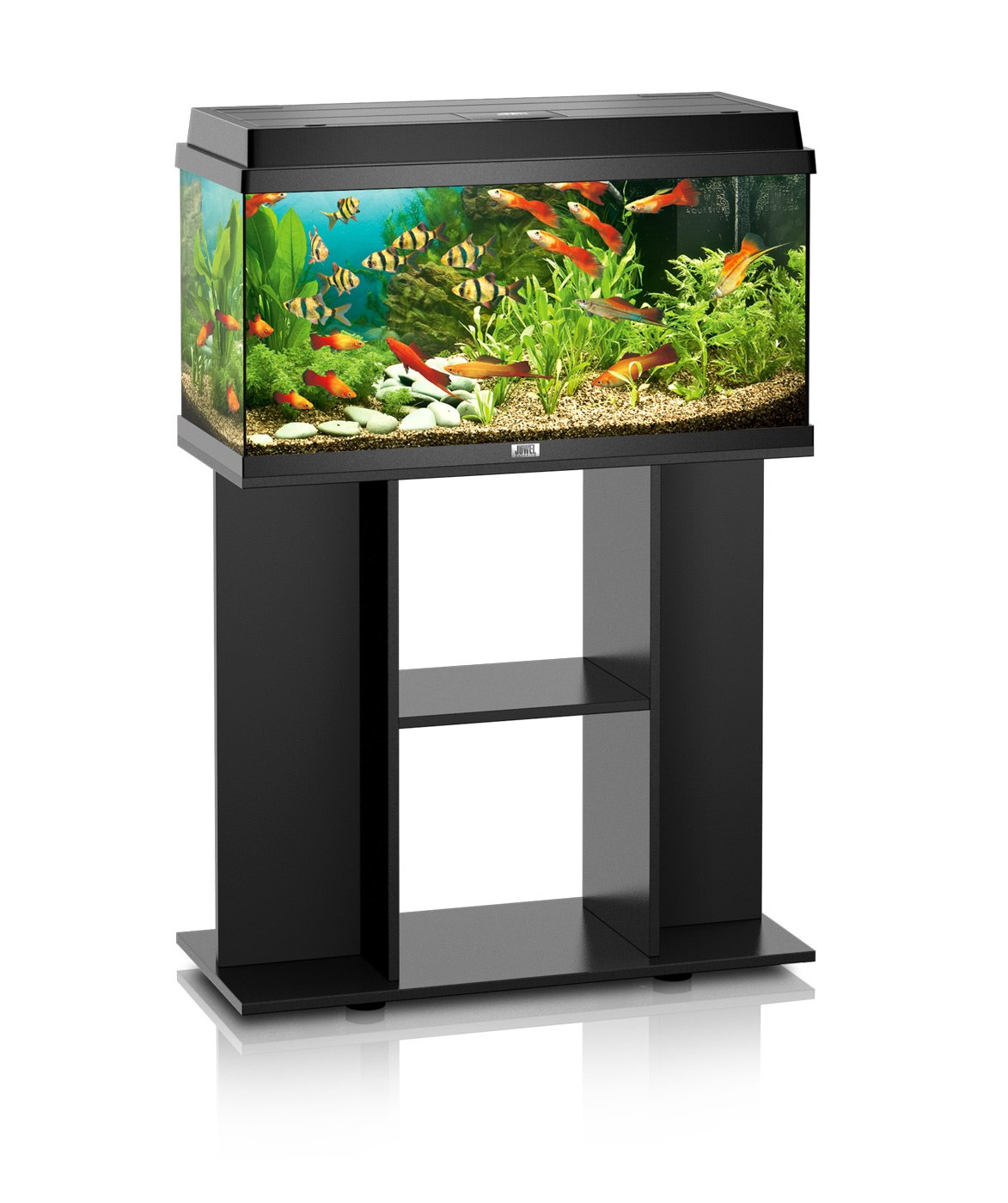prix aquarium 80 litres. Black Bedroom Furniture Sets. Home Design Ideas