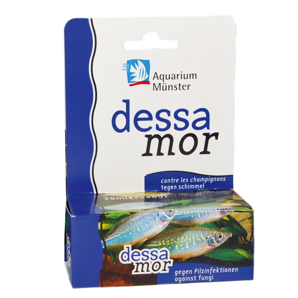 aquarium m nster dessamor 20 ml traitement concentr contre les infections fongiques traite. Black Bedroom Furniture Sets. Home Design Ideas