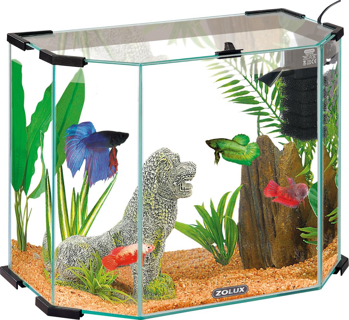 Zolux aquarium aquarium zolux 28 images aquarium 10 litres for Aquarium zolux