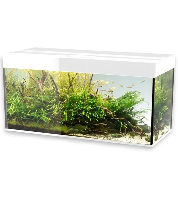 Aquael glossy 120 blanc laqu aquarium 120 cm volume 260 for Meuble aquarium 120 cm