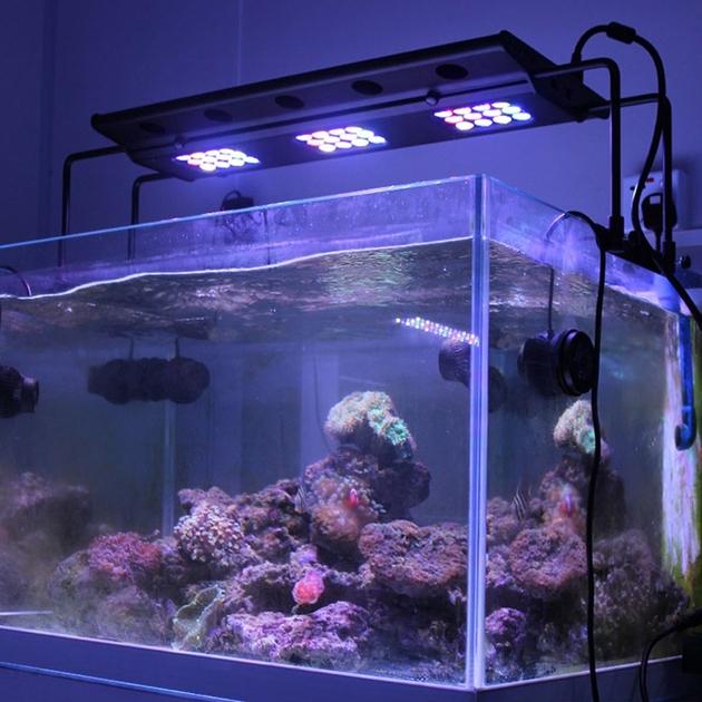 aquapro plus a001 t 108w re 36 leds hautes puissances pour aquarium r 233 cifal jusqu 224