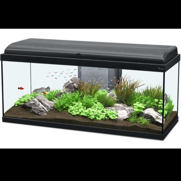 aquarium aquatlantis aquadream 100 tout quip 115 l. Black Bedroom Furniture Sets. Home Design Ideas
