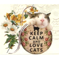 41 gommettes Keep Calm and Love Cats