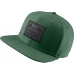 Casquette NIKE Icon Snap Back green