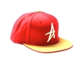 Casquette ALTAMONT The Wood tan