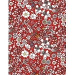 Liberty June's Meadow rouge coloris B 20x137 cm