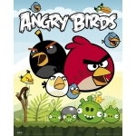 "ANGRY BIRDS - Poster - 40 x 50 cm - "" Group """