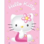 "HELLO KITTY - Poster - 50 x 40 cm - ""Pink"""