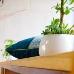 ede-design7-green-pillow-l-5-1