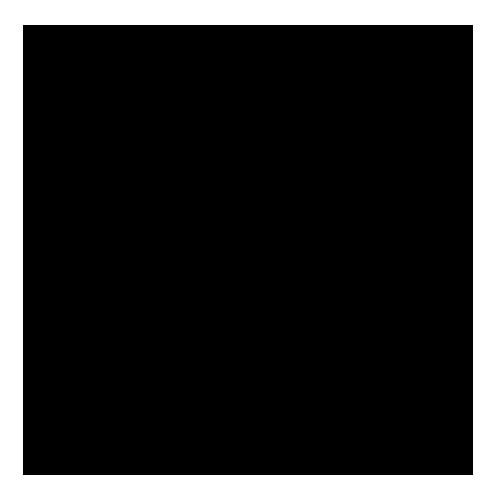 kydex noir