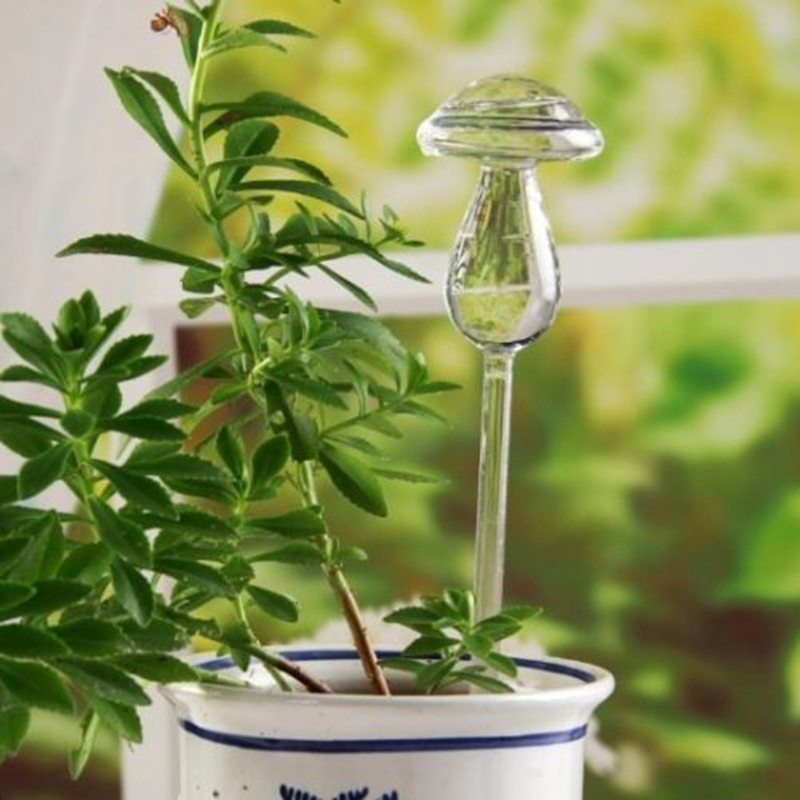 Automatic glass watering device