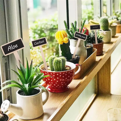 20 PCS Mini Wooden Plant Markers