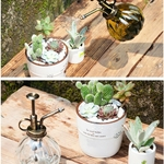 6-5-Vintage-Pumpkin-Shape-Glass-Spray-Bottle-Color-Watering-Flower-Jug-Garden-Succulent-Planting-Supplies