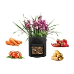 10-Gallon-Felt-Plants-Growing-Bag-Vegetable-Flower-Aeration-Grow-Bag-Planting-Pot-Container-Garden-Planting