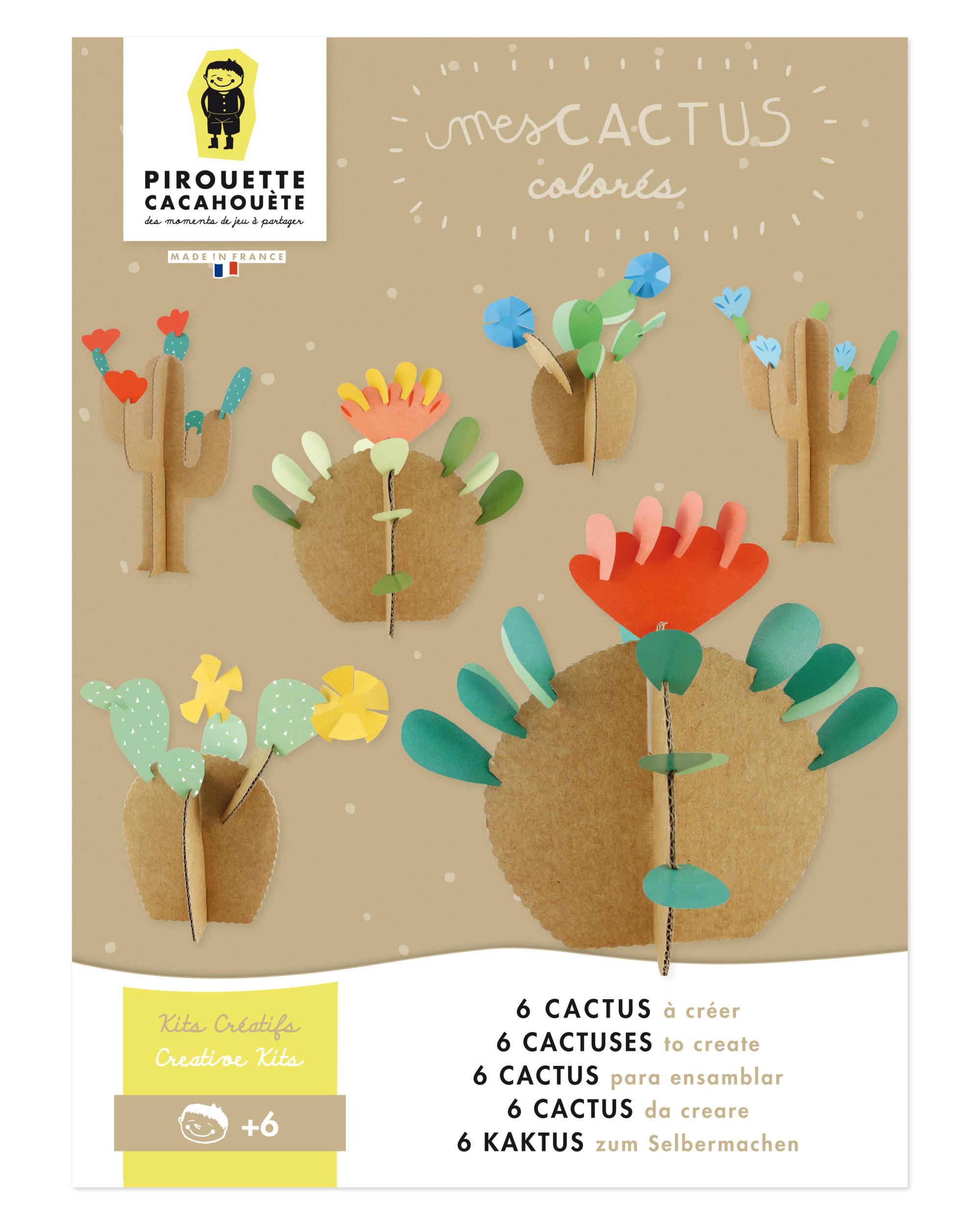 Mes cactus colorés