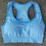 Brassière de Yoga - Sans couture - S au L - Bleu