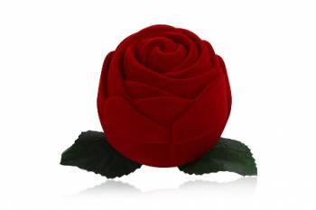 Écrin à bijoux grosse Rose