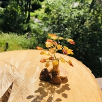 pierres-du-monde-vosges-arbre-de-vie-ambre-naturelle-158