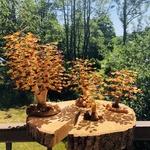 pierres-du-monde-vosges-arbre-de-vie-ambre-naturelle-159