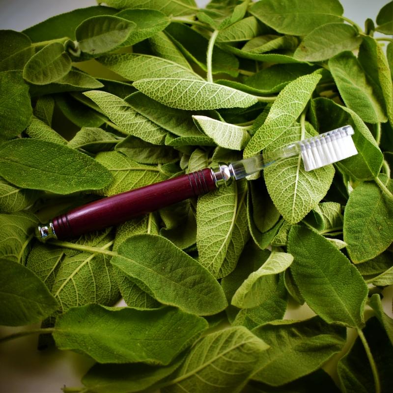 Brosse à dents en Amarante