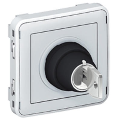LEGRAND - Interrupteur à clé Ronis N°455 2 positions Plexo composable IP55 3A 250V - gris - REF 069534