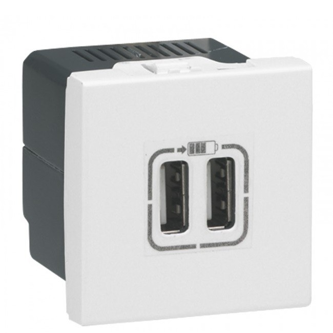 LEGRAND - Alimentation USB 230 V / 5 V - 2 ports - 2 modules - blanc - Réf - 077594