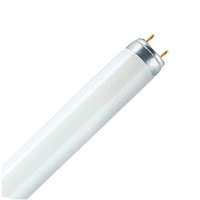 Tube Fluorescent 58w 4000K /840 Blanc Brillant - G13 avec Elecmarq