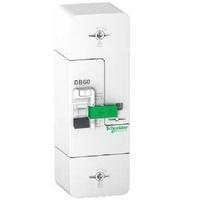 SCHNEIDER ELECTRIC - Disjoncteur de branchement Sélectif - 2 Pôles - 60 A - 500 mA - Réf - R9FS660