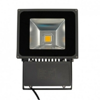 MIIDEX - Projecteur Extérieur LED 80W - IP65 3000K - REF 8009