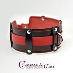 collier-sm-cuir-noir-rouge-anneau d-1