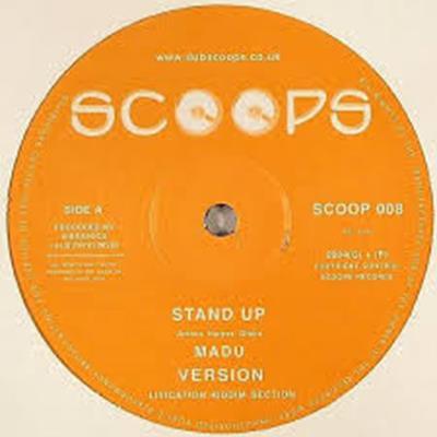 vinyl512