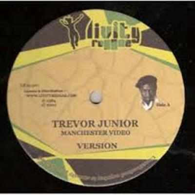 vinyl547