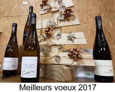 voeux-2017-2