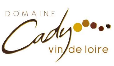 logo cady new
