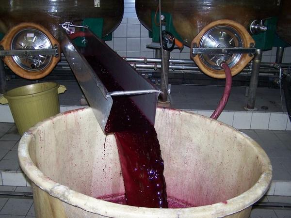 elaboration-vins-rouge