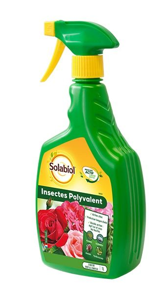 Insecticide Insectes Polyvalent