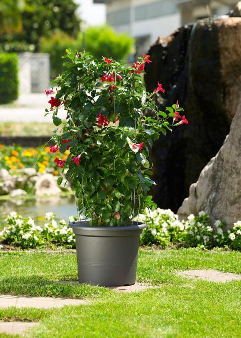 Pots et jardinières gamme Géo