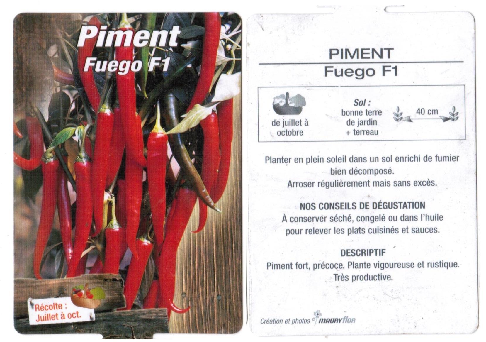 Piment plantons plants potager - La jardinerie de pessicart nice - Livraison a domicile nice 06 plantes vertes terres terreaux jardinage arbres cactus