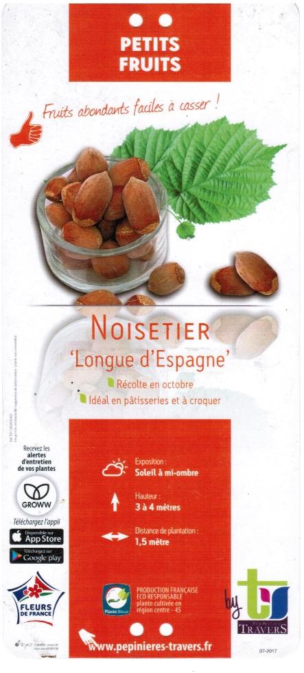 Noisetier Longue d\'Espagne