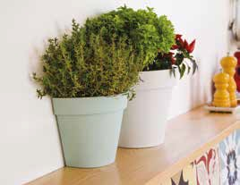pot mural-applique  TOSCANE 25 cm de chez EDA plastique blanc intérieur - la Jardinerie de Pessicart Nice 06100
