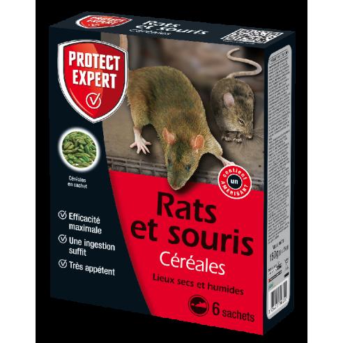 protect expert rats et souris cereales lieux secs et humides 150gr - La jardinerie de pessicart nice - Livraison a domicile nice 06 plantes vertes terres terreaux jardinage arbres cactus