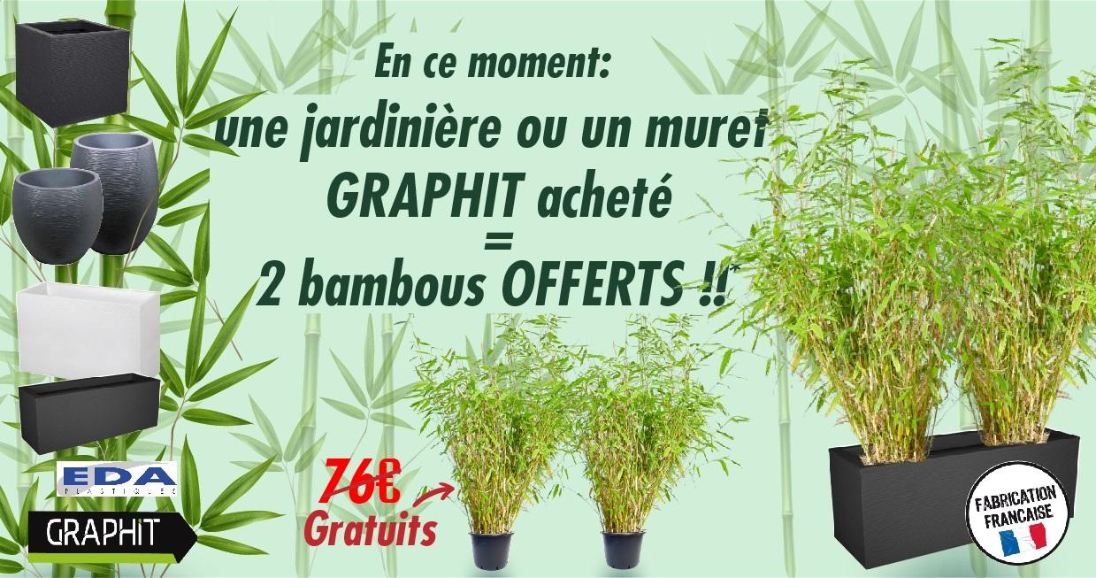 publi facebook promo 2 bamboo