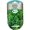 Basilic fin vert x 4