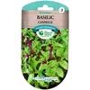5-473-BASILIC cannelle 2 gr- la jardinerie de pessicart nice 06100