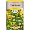 Mélange de fleurs terrain sec la  jardinerie de pessicart nice 06100