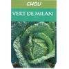 Chou vert de Milan- La Jardinerie de Pessicart Nice 06100
