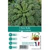 Choux Kale Winterbor - La Jardinerie de Pessicart Nice 06100